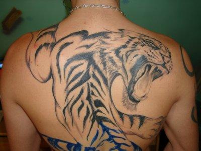 Modele Tatouage Tigre Trouvez Le Meilleur Prix Sur Voir Avant D